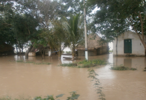 Homes and belongings washed away in Andhra Pradesh